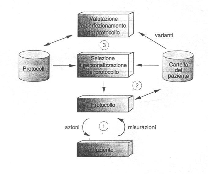 Il ciclo vitale dei protocolli