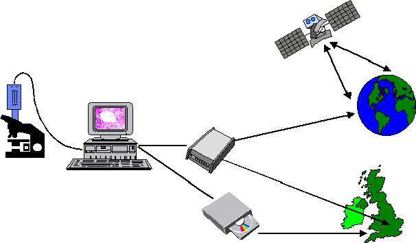 La Telepatologia