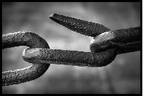 Sicurezza informatica e ignoranza del personale