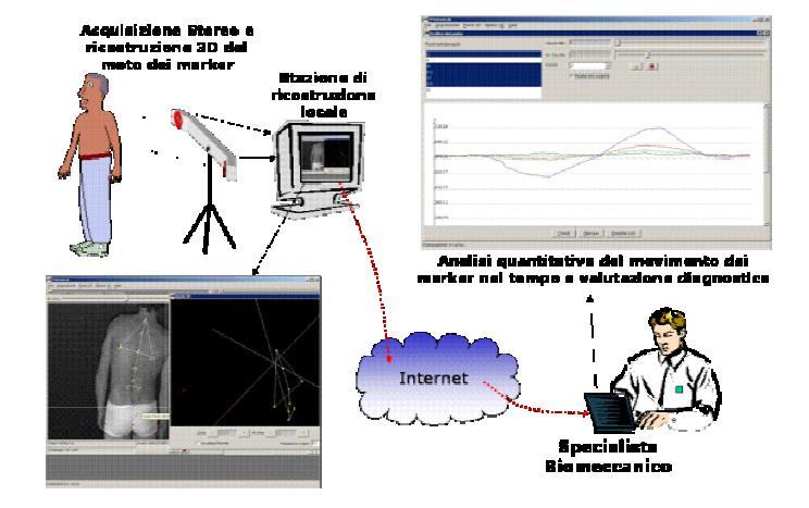 Sistema 3D-TMT