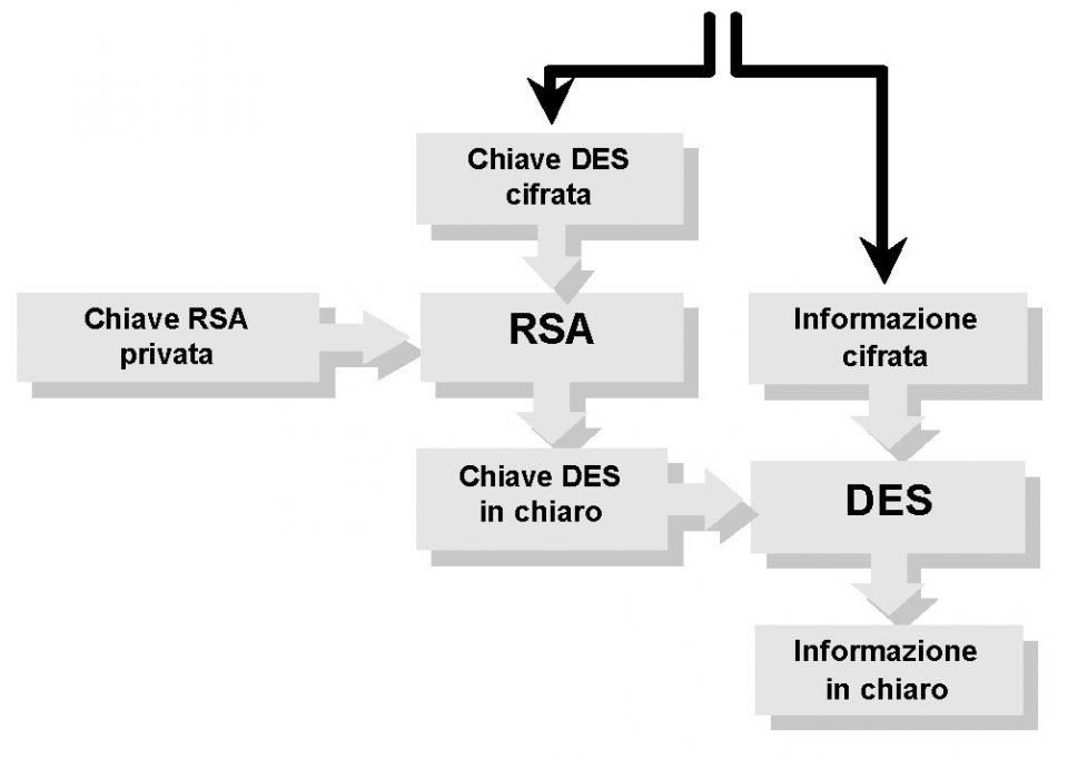 Algoritmo per implementare la riservatezza in sicurezza informatica - Rimozione della riservatezza