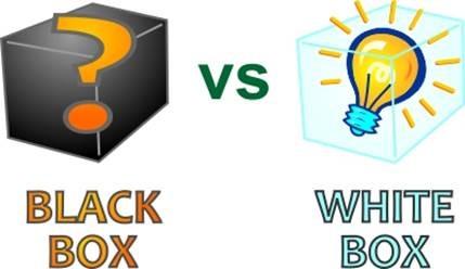 Le tecniche di Black-Box e White-Box testing
