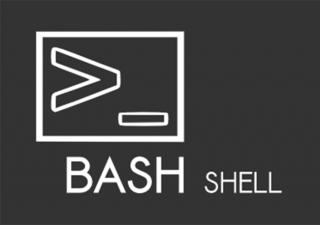 Definizione e caratteristiche della Bash Shell dei sistemi Unix