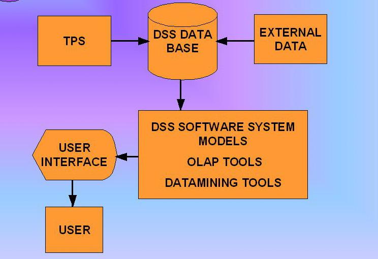 Architettura software di un Decision Support System (DSS)