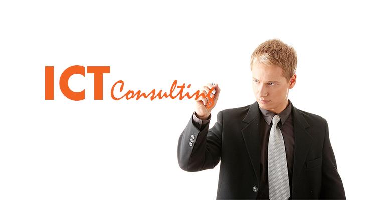 Professione Informatica - La figura del Consulente aziendale ICT (ICT consultant)