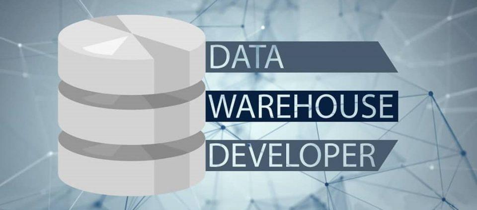 Professione Informatica - La figura del Datawarehouse developer (Dataminer)