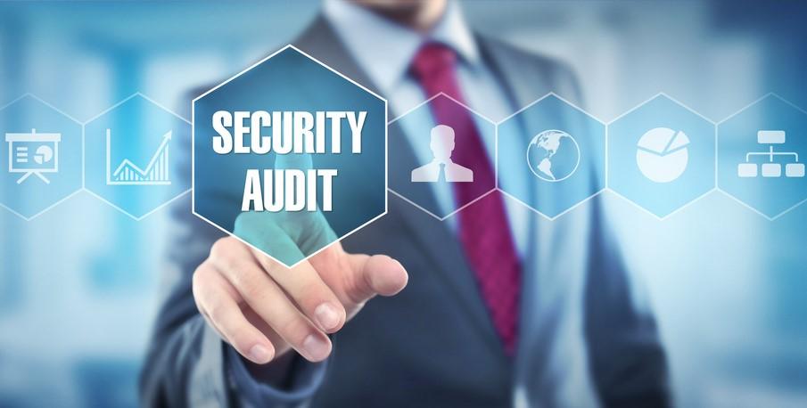 Professione Informatica - La figura del Security auditor