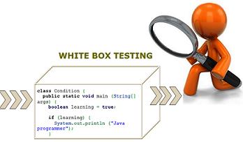 White Box Testing - Copertura delle istruzioni, decisioni e condizioni