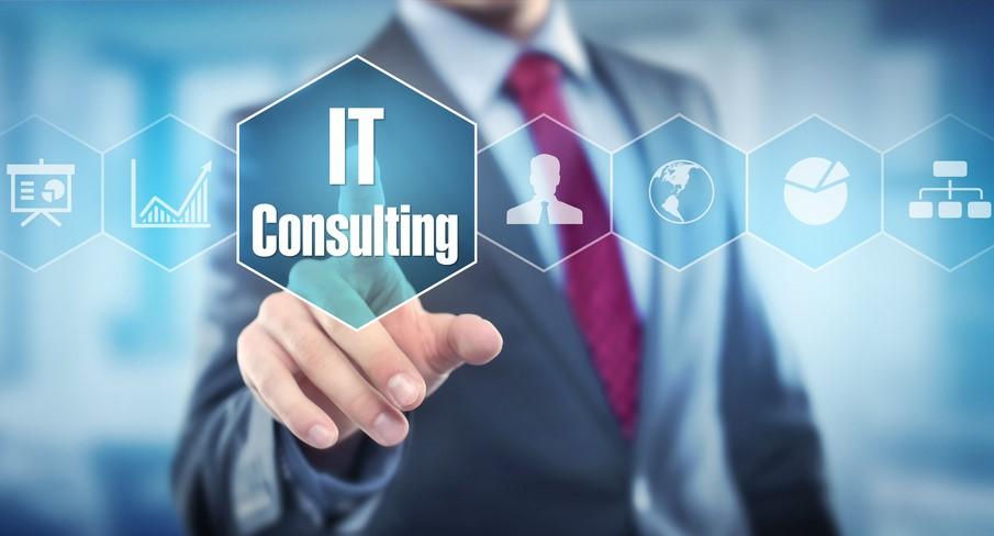 Lavoro - La consulenza informatica presso le aziende