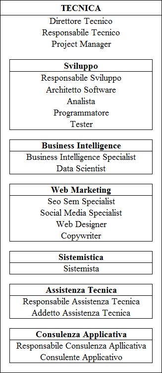 Come si struttura una azienda informatica e quali sono le figure professionali