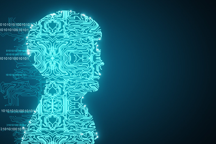 Che cos'è e cosa interessa la digital culture in azienda