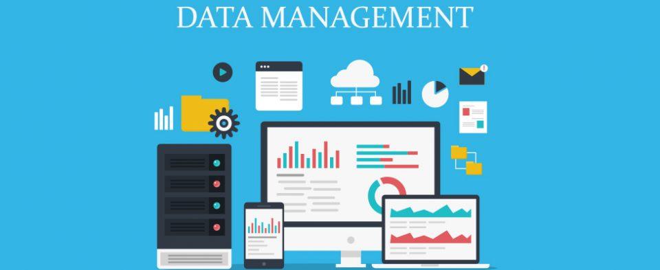 Che cos'è e a cosa serve Data Management in azienda