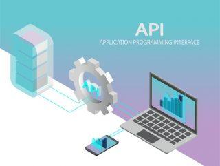 Caratteristiche e differenza tra Web Services e API in informatica