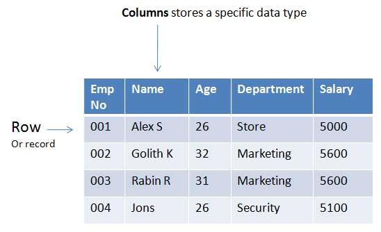 Che cos'è ed esempi di record in un database