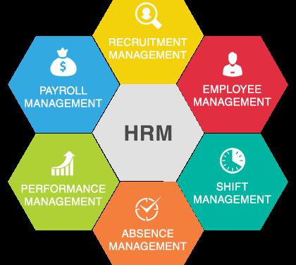 Che cos'è, tipologie e struttura dell'E-HRM