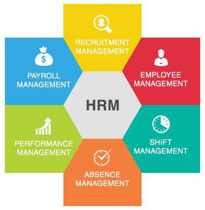 Caratteristiche, tipologie e struttura dell'E-HRM