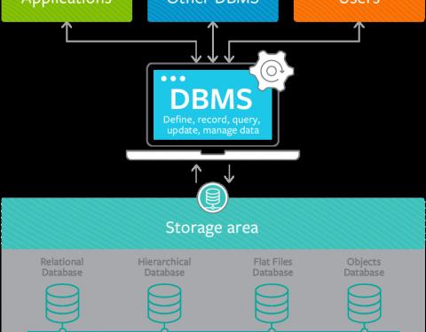 Definizione, caratteristiche, e vantaggi di Database Management System e Database