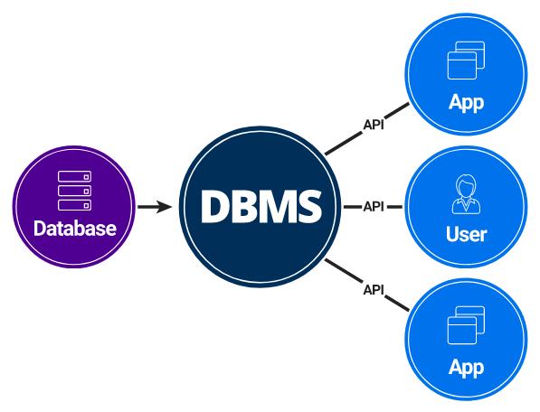Definizione e differenza tra DBA e DBMS in informatica